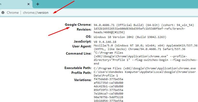 Cek Versi Google Crome Melalui chrome://version (all operating systems)